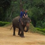 My first ride on an elephant