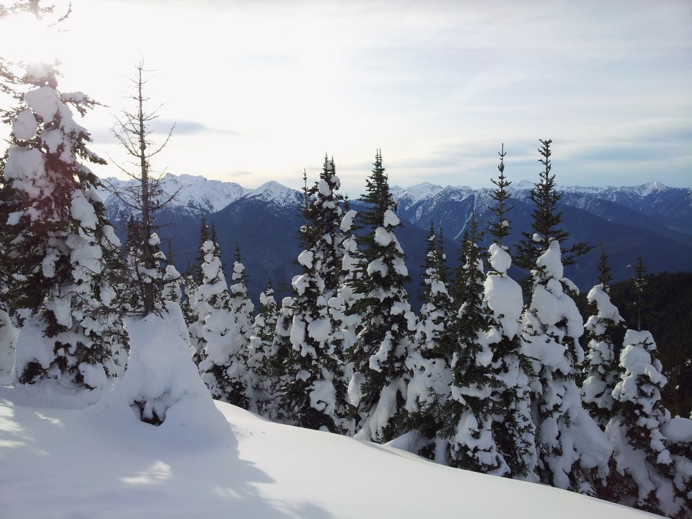 Winter view at Hurricane Ridge in the Olympic National Park