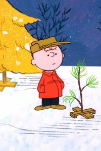 Charlie Brown looking at his scrawny tree
